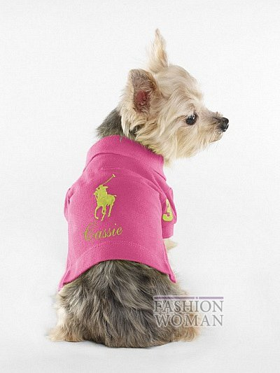 Одежда для собак от Ralph Lauren фото №7