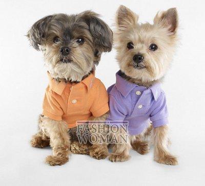 Одежда для собак от Ralph Lauren фото №9
