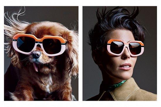 Собака стала лицом рекламной кампании Karen Walker фото №14