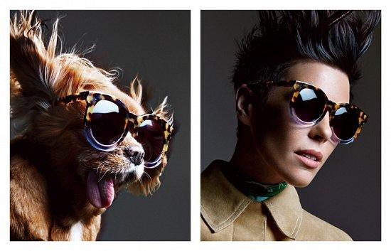 Собака стала лицом рекламной кампании Karen Walker фото №17
